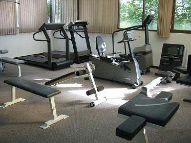 Asa-Garden-gym