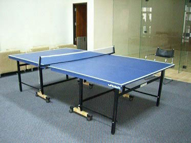 Asa-Garden-table-tennis